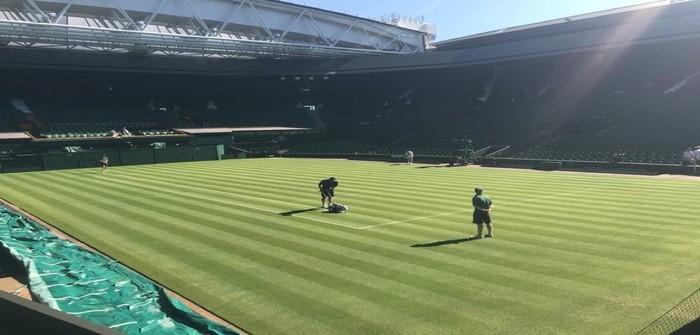 Wimbledon Centre Court Grass Maintenance