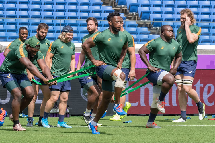 Springboks Training