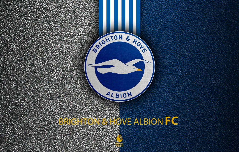 Brighton-and-Hove-Albion