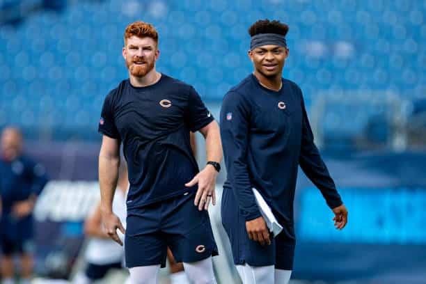 Andy Dalton Named Starting Qb For Bears